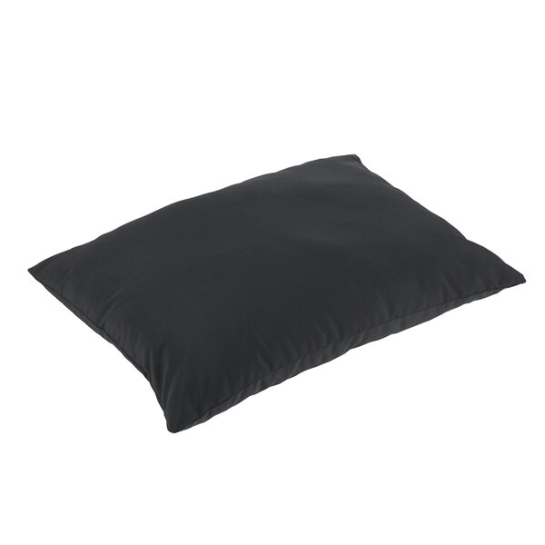 Hinkson Outdoor Sunbrella Floor Pillow by Brayden Studio