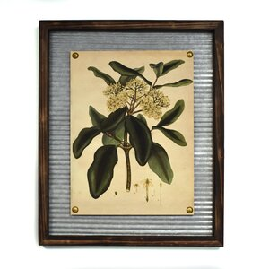 'Hydrangea' Framed Graphic Art Print by Lark Manor