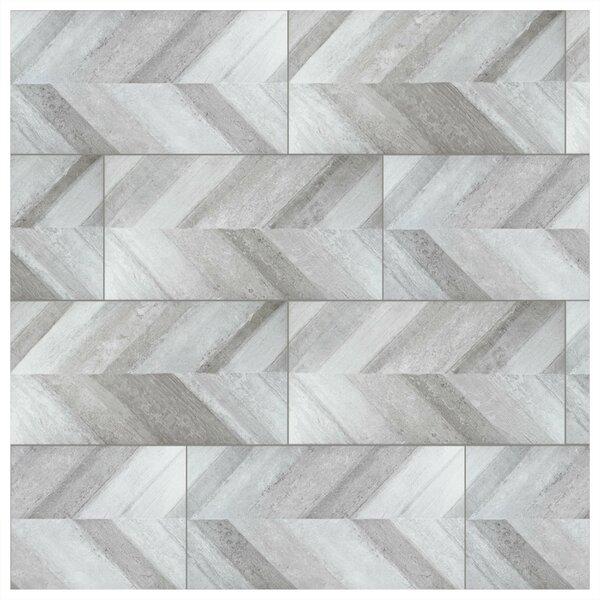 Aetolia 18 x 35 Porcelain Wood Look in Gray by EliteTile