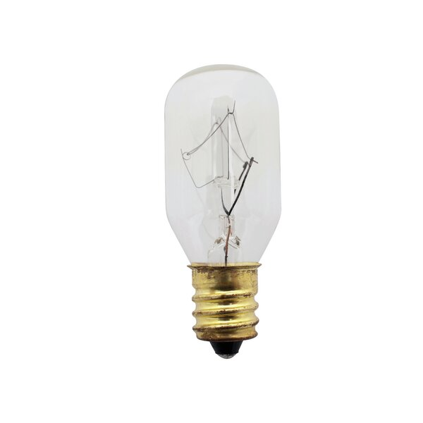 15W 120-Volt Incandescent Light Bulb by Nuevo