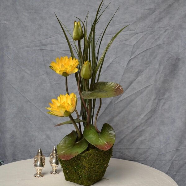 Water Lily Floral Arrangement in Moss Pot by Rosdorf Park