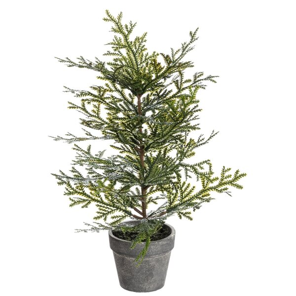 Potted Cedar Cedar Tree by The Holiday Aisle