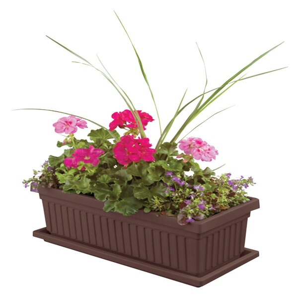 Plastic Planter Box (Set of 6) by Myers/Akro Mills