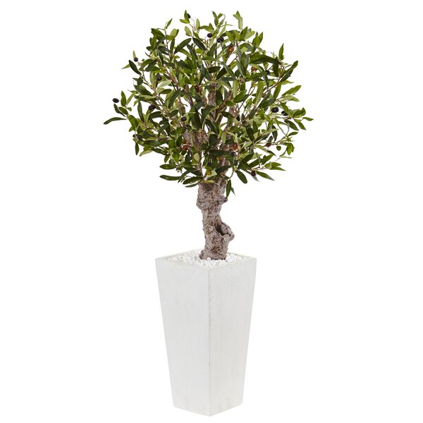 Artificial Olive Tree in Planter by Orren Ellis