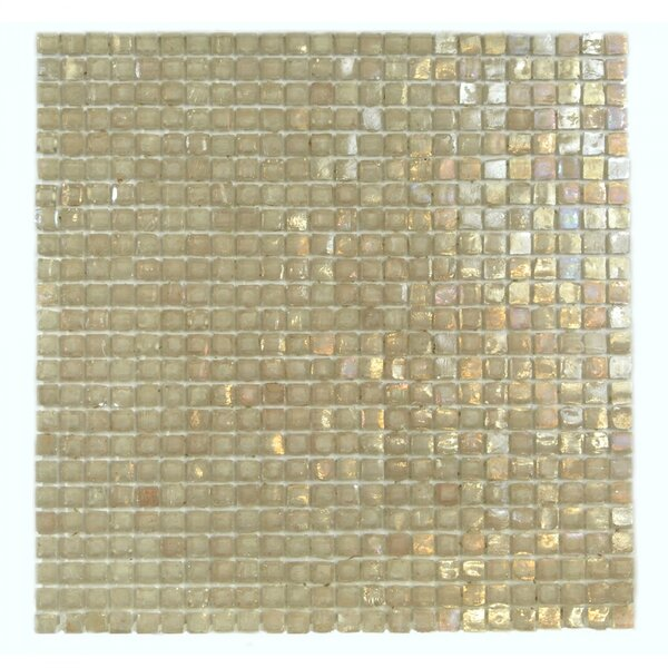 Classic Recycled 0.38 x 0.38 Glass Mosaic Tile in Peach by Abolos