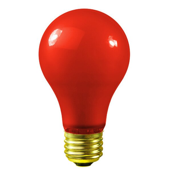 25W 130-Volt Light Bulb (Set of 25) by Vickerman