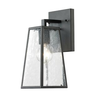 Led Outdoor House Lights Outdoor wall sconces youll love 1 light led outdoor sconce workwithnaturefo