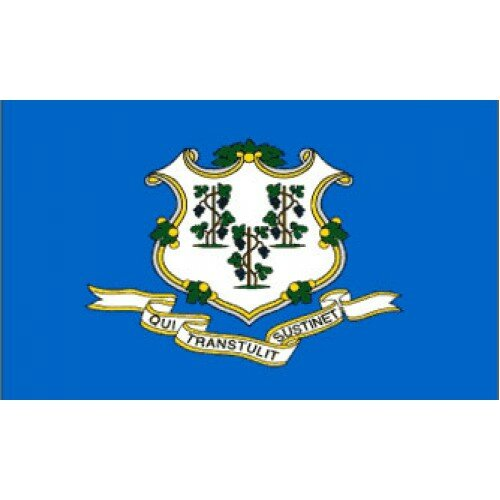 Connecticut Traditional Flag by NeoPlex