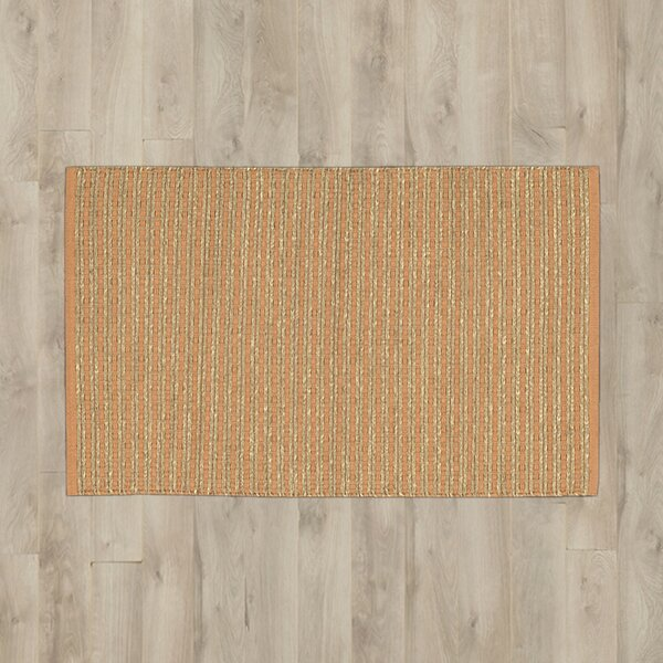 Caicos Brown Area Rug by Bay Isle Home