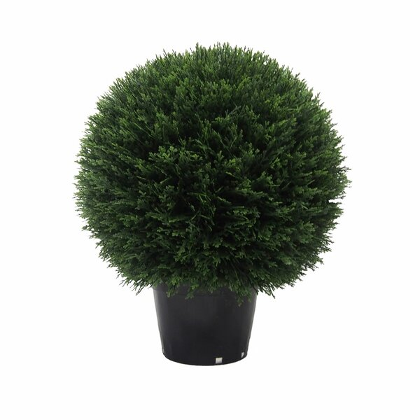 Inherently Flame Retardant Ball Floor Cedar Topiary in Pot by Fleur De Lis Living