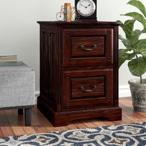 Appleby Transitional 2-Drawer Dark Walnut Vertical Filing Cabinet by Darby Home Co