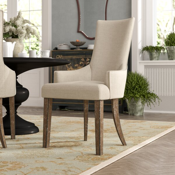 Hobart Zona Arm Chair (Set of 2) by Astoria Grand