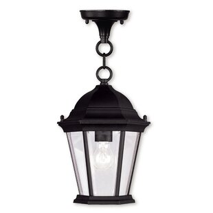 Big Save Busse 1-Light Outdoor Hanging Lantern By Darby Home Co