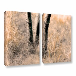 Desert Grasses Ii by Linda Parker 2 Piece Photographic Print on Wrapped Canvas Set by ArtWall