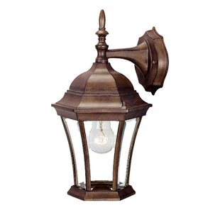 Affordable Francesca Lane Outdoor Wall Lantern By Alcott Hill