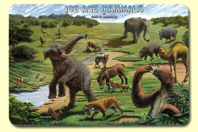Ice Age Placemat (Set of 4) by Painless Learning Placemats