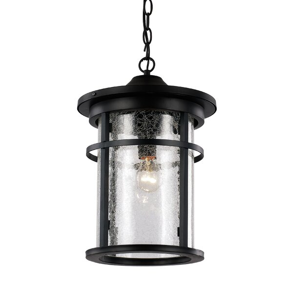 Ilene 1-Light Outdoor Hanging Lantern by Latitude Run