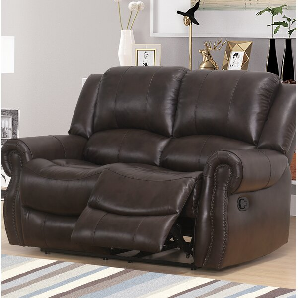 Stay On Trend This Digiovanni Reclining Loveseat by Red Barrel Studio by Red Barrel Studio