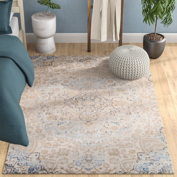 Damien Beige/Blue Area Rug by Mistana