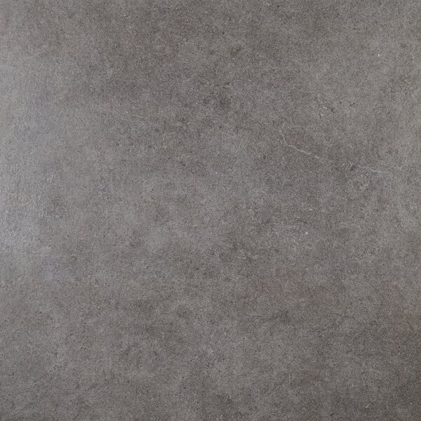 Haut Monde 24 x 24 Porcelain Field Tile in Empire Black by Daltile
