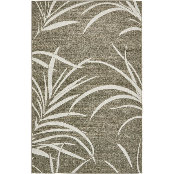 Derrytown Brown Indoor/Outdoor Area Rug by Bay Isle Home