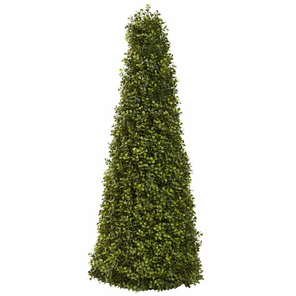 Boxwood Cone Topiary by Darby Home Co