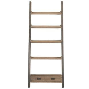 Ronan Patterned Library Ladder Bookcase By Foundry Select