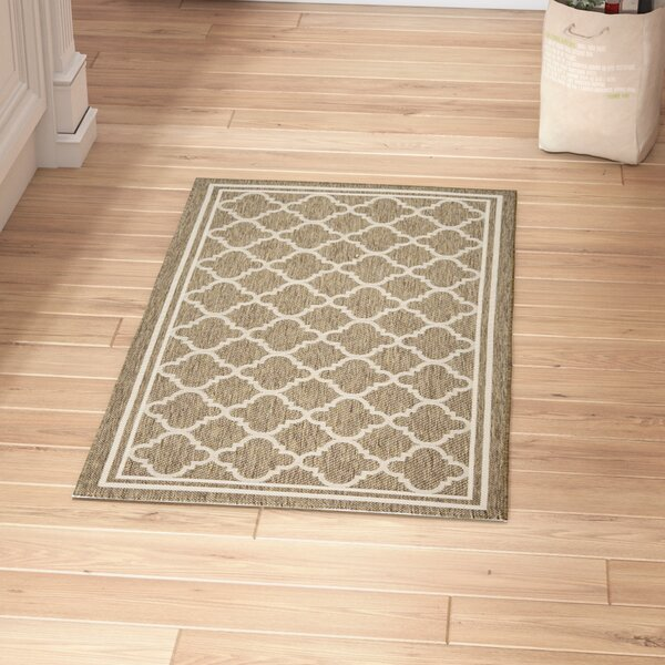 Short Brown/Bone Outdoor Area Rug by Winston Porter