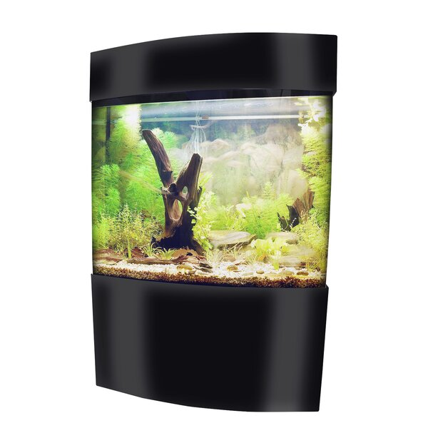 Beagle Aquarium Tank by Tucker Murphy Pet