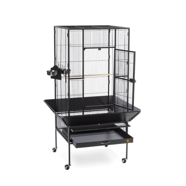Park Plaza Large Bird Cage with Casters by Prevue Hendryx