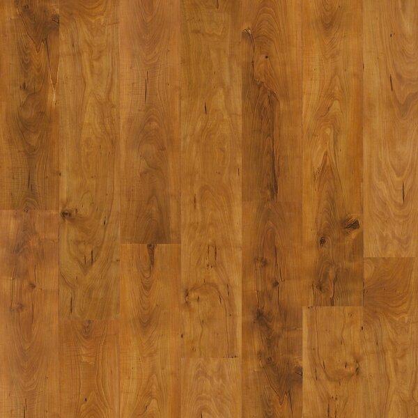 Fairfax Plus 8 x 48 x 8mm Pine Laminate Flooring in Herndon by Shaw Floors