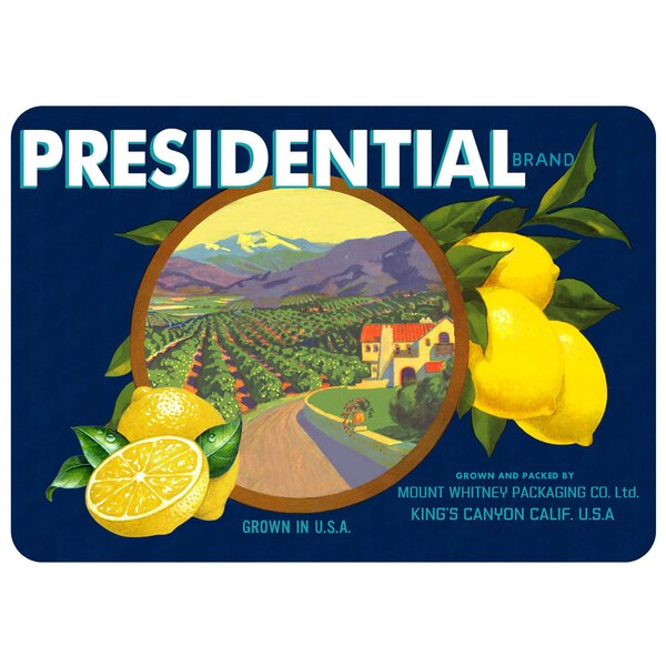 Molimo Presidential Lemons Kitchen Mat