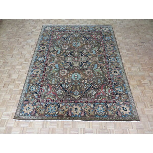 One-of-a-Kind Emerystone Hand-Knotted Cotton Brown Area Rug by Canora Grey