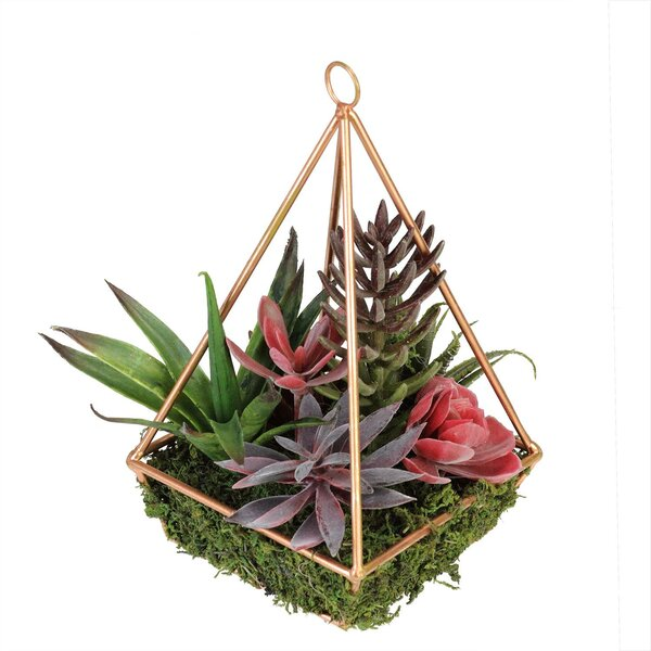 Artificial Desktop Succulents Arrangement in Decorative Vase by Bungalow Rose