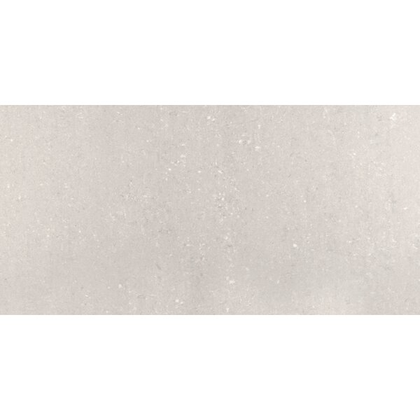 Pietre Del Nord 12 x 24 Porcelain Field Tile in Polished Vermont by Emser Tile