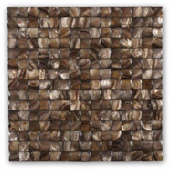 Kalai .79 x .79 Glass  Pearl Shell Mosaic Tile in Brown by Splashback Tile