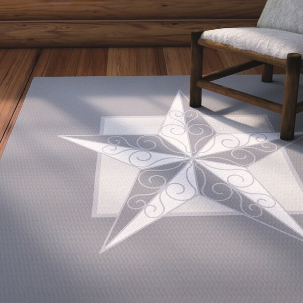 Meigs Night Star Gray Indoor/Outdoor Area Rug by Laurel Foundry Modern Farmhouse
