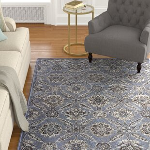 Best Review Palmilla Blue/Black/Brown Area Rug By Astoria Grand