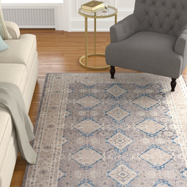 Sofia Light Gray/Beige Area Rug by Darby Home Co