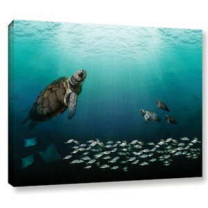 Sea Turtles Graphic Art on Wrapped Canvas by Bay Isle Home