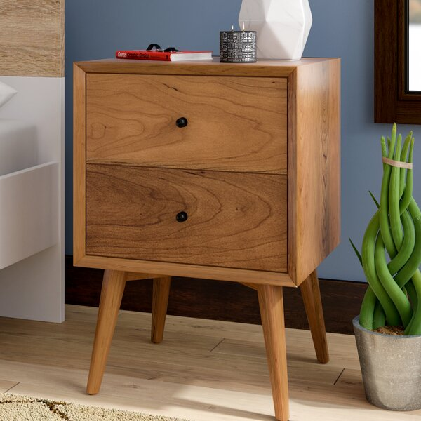 Parocela 2 Drawer Nightstand by Langley Street