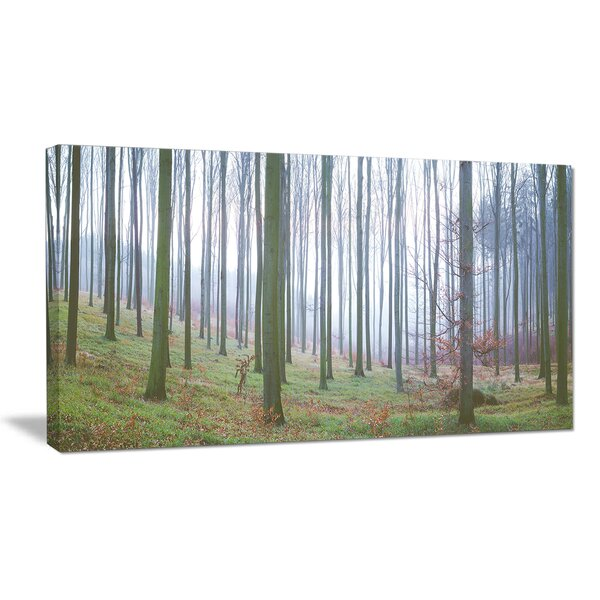 Autumn Tree Trunks Panorama Photographic Print on Wrapped Canvas by Design Art