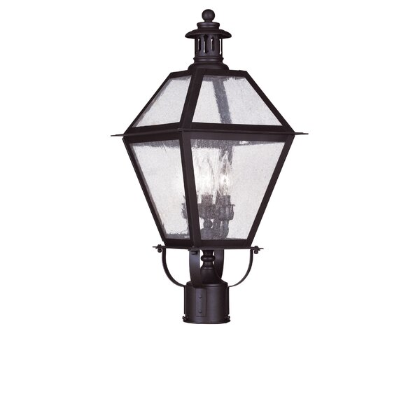 Outdoor 3-Light Lantern Head by Darby Home Co