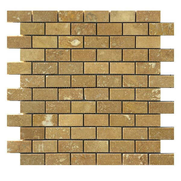 Honed 1 x 2 Natural Stone Mosaic Tile in Noce by QDI Surfaces