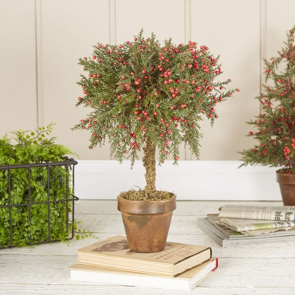 Regent Cypress Topiary by Birch Lane™
