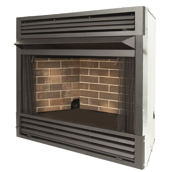 Angelo Recessed Wall Mounted Fireplace Insert by Winston Porter Winston Porter