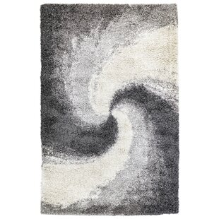 Find Soria Spiral Gray/White Area Rug By Ebern Designs