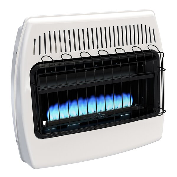 30,000 BTU Wall Mounted Natural Gas Manual Vent-Fr