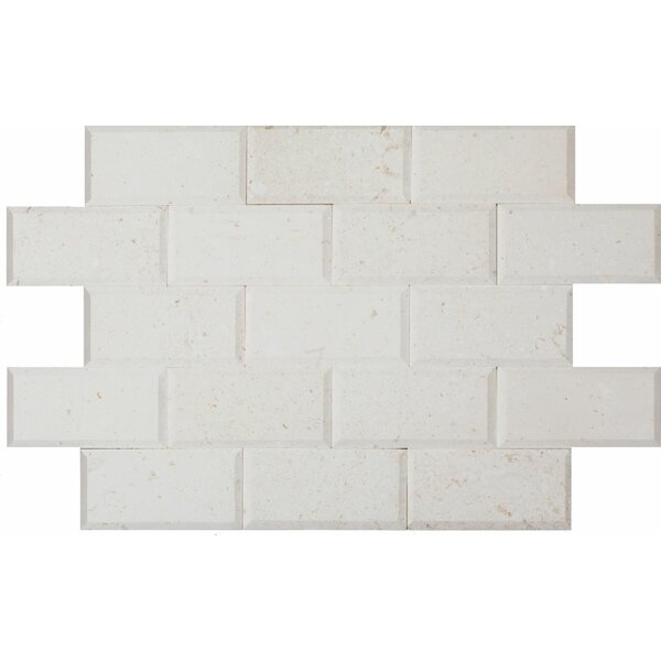 3 x 6 Limestone Mosaic Tile in Corinthian Fossil by Ephesus Stones