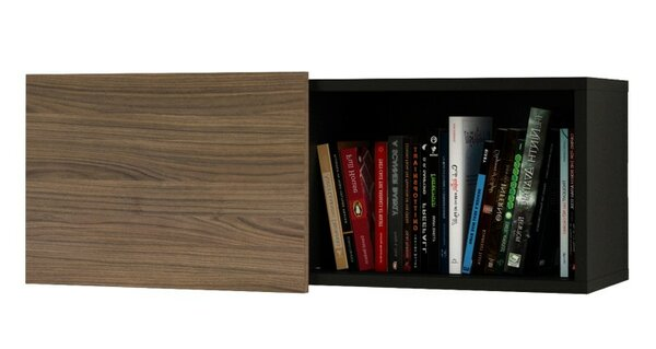 Avia Wall Shelf with Sliding Door by Orren Ellis